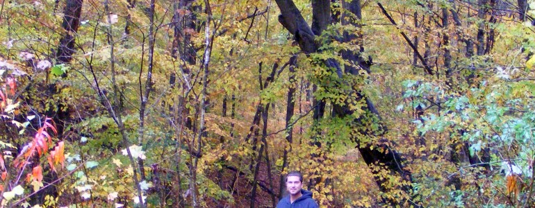 fall color2