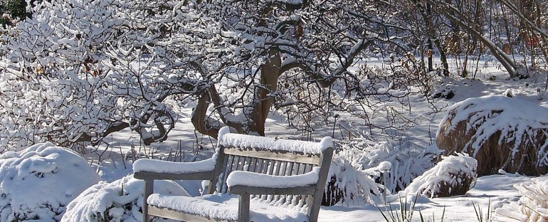Winter Landscapes: What's missing in yours?