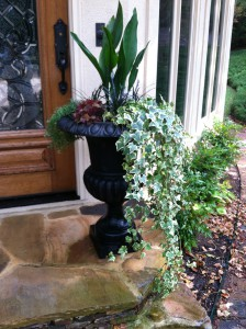 Winter foliage planters